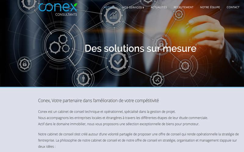 Conex Consultants RDC
